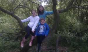 Three friends from Bristol DiSC enjoy a day out at Westonbirt Arboretum
